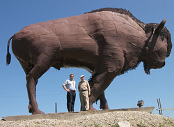 The famous 19 feet high, 27 feet long, 9 ton steel bison sculpture on Highway 11 North.